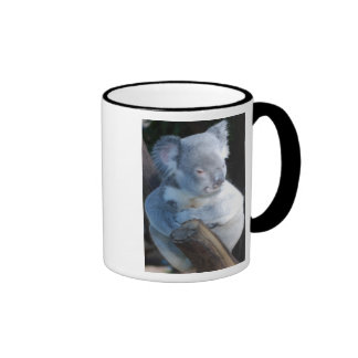 Cuddly Koala Ringer Mug