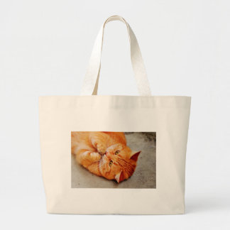 Cuddly Little Cat - Cute Kitty Print Large Tote Bag