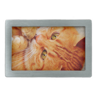 Cuddly Little Cat - Cute Kitty Print Rectangular Belt Buckle