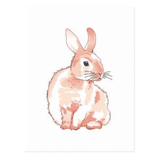 Cuddly Rabbit Postcard