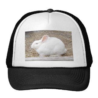 Cuddly White Bunny Trucker Hat