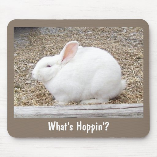 Cuddly White Bunny Mouse Pad