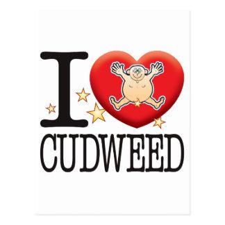 Cudweed Love Man Postcard