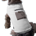 Cuelgo mi correo en Jackson Hole Camisa De Mascota