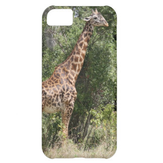 cuello de la jirafa