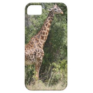 cuello de la jirafa iPhone 5 Case-Mate cárcasas