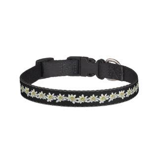 Cuello de perro de Edelweiss Collar De Perro