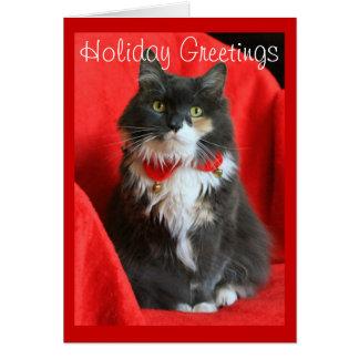 Cuello del navidad del gato que lleva mullido - tarjeta de felicitación