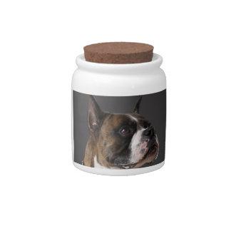 Cuello que lleva del perro, mirando lejos jarra para caramelo