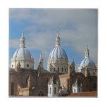 Cuenca, Ecuador - nueva catedral Azulejo Ceramica