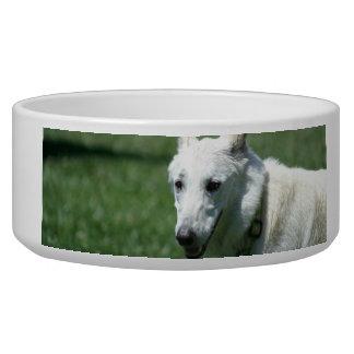 Cuenco blanco del perro de pastor alemán comedero para mascota