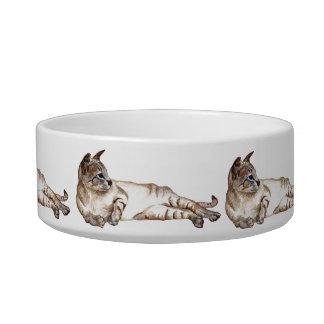 cuenco de alimentación del gato tazones para agua para gatos