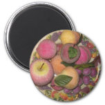 Cuenco de fruta imán para frigorífico