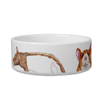 cuenco de la alimentación de la rata tazón para agua para gatos