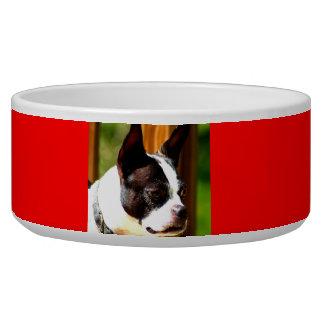 Cuenco de la comida de perro de Boston Terrier Comedero Para Mascota