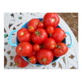 Cuenco de tomates postal