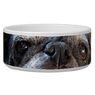 Cuenco del alimento para animales de Bumblesnot Tazon Para Perro