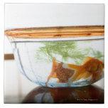 Cuenco del Goldfish Azulejo Cuadrado Grande