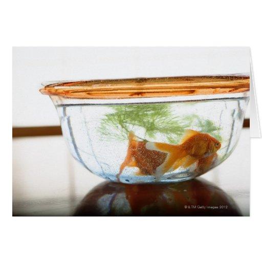 Cuenco del Goldfish Tarjeta De Felicitación