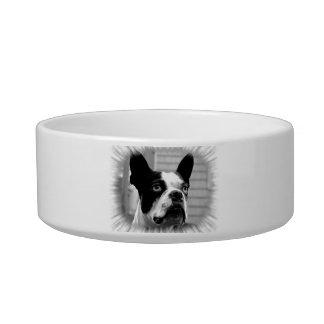 Cuenco del mascota de Boston Terrier Comedero Para Mascota