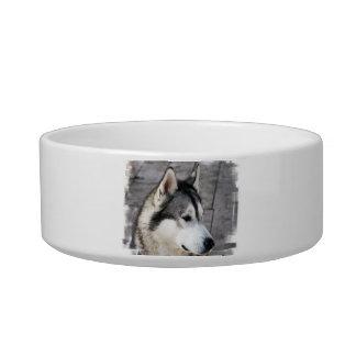 Cuenco del mascota de la foto del Malamute Bol Para Gato
