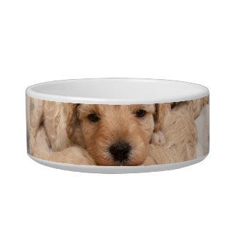 Cuenco del mascota del collage del perrito bol para gato