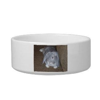 Cuenco del mascota del conejo de conejito del gris tazon para gato