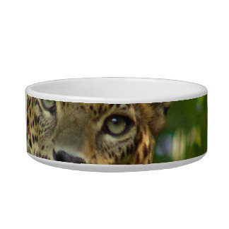 Cuenco del mascota del leopardo tazones para gatos