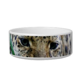 Cuenco del mascota del leopardo de Amur Boles Para Gatos