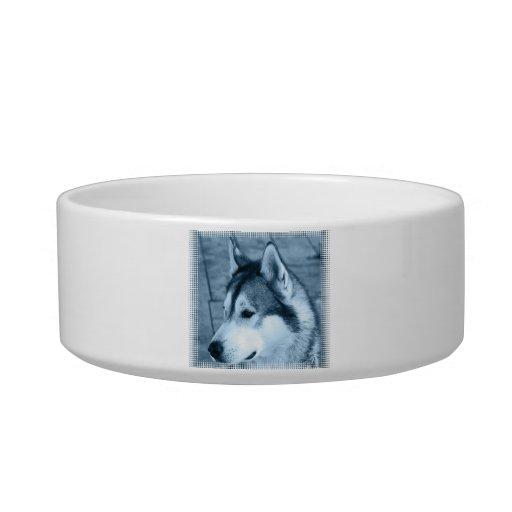 Cuenco del mascota del Malamute de Alaska Bol Para Gato