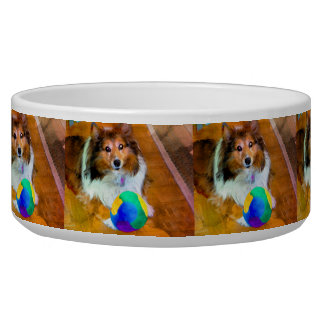 Cuenco del mascota del perro pastor de Shetland Comedero Para Mascota