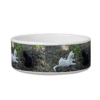 Cuenco del mascota: El jugar blanco y negro de los Tazones Para Gatos