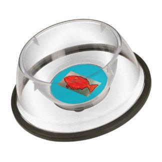 Cuenco del mascota pequeño con los pescados cuenco para mascotas