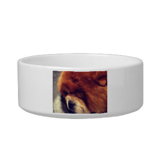 Cuenco del perro chino de perro chino bol para gato