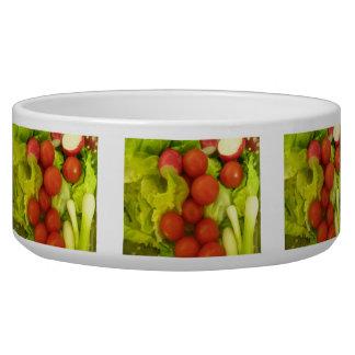 Cuenco del perro de las verduras de ensalada tazon para perro