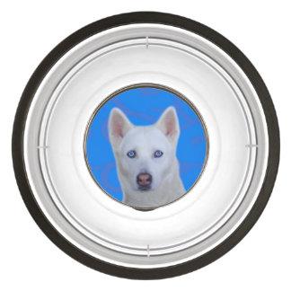 Cuenco grande del mascota del husky siberiano cuenco para mascotas