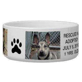 Cuenco personalizado del perro para su mejor amigo comedero para mascota