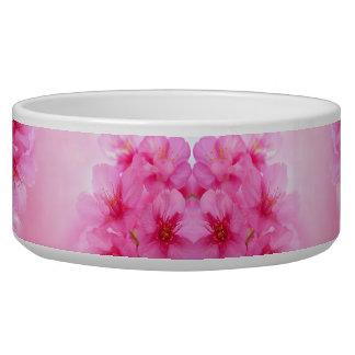 Cuenco rosado #1 de la flor de cerezo comedero para mascota
