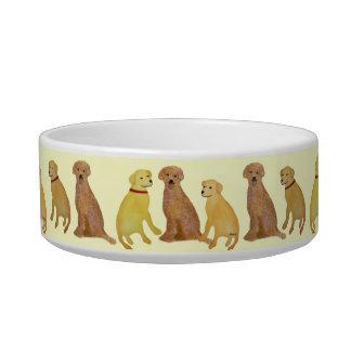 Cuencos de oro del mascota de los labradores retri tazón para comida gato