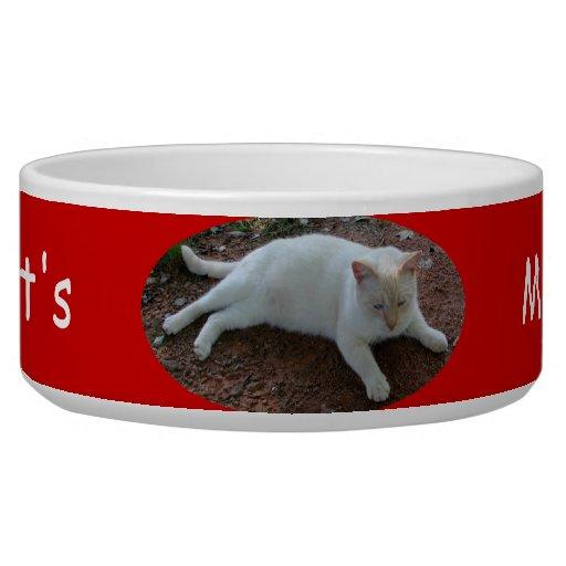 Cuencos del mascota del maullido del gato comedero para mascota