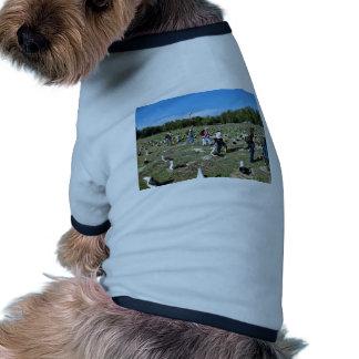 Cuenta de jerarquías del albatros de Laysan Camiseta De Perrito