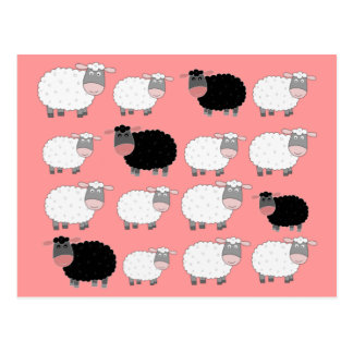 Cuenta de ovejas postal