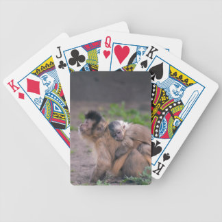 Cuenta en usted barajas de cartas