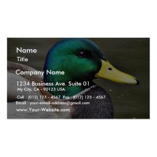 Cuentas de los patos plantilla de tarjeta de visita
