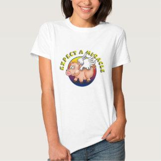 Cuente con un milagro --- Reconocimiento del AA Camisas