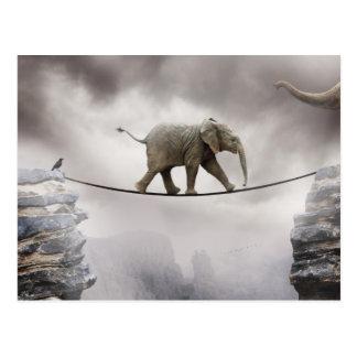 Cuerda tirante de los paseos del elefante del bebé tarjetas postales