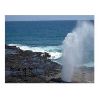 Cuerno que echa en chorro Kauai, Hawaii Tarjeta Postal