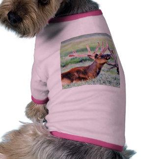 Cuernos de los alces camisetas de perro