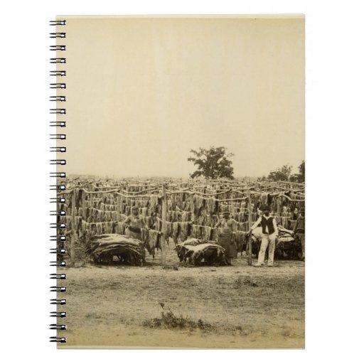 Cuero de sequía, la Argentina (impresión del album Spiral Notebooks