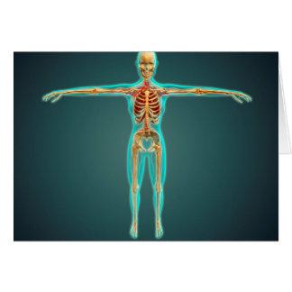 Cuerpo humano que muestra el sistema esquelético, tarjeta de felicitación